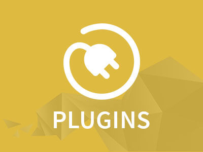 nopCommerce Plugins
