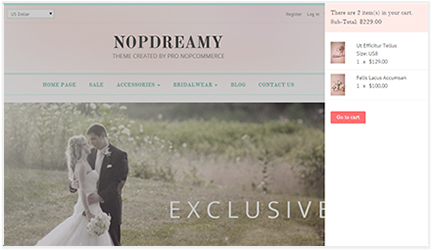 NopDreamy - nopCommerce Responsive Theme